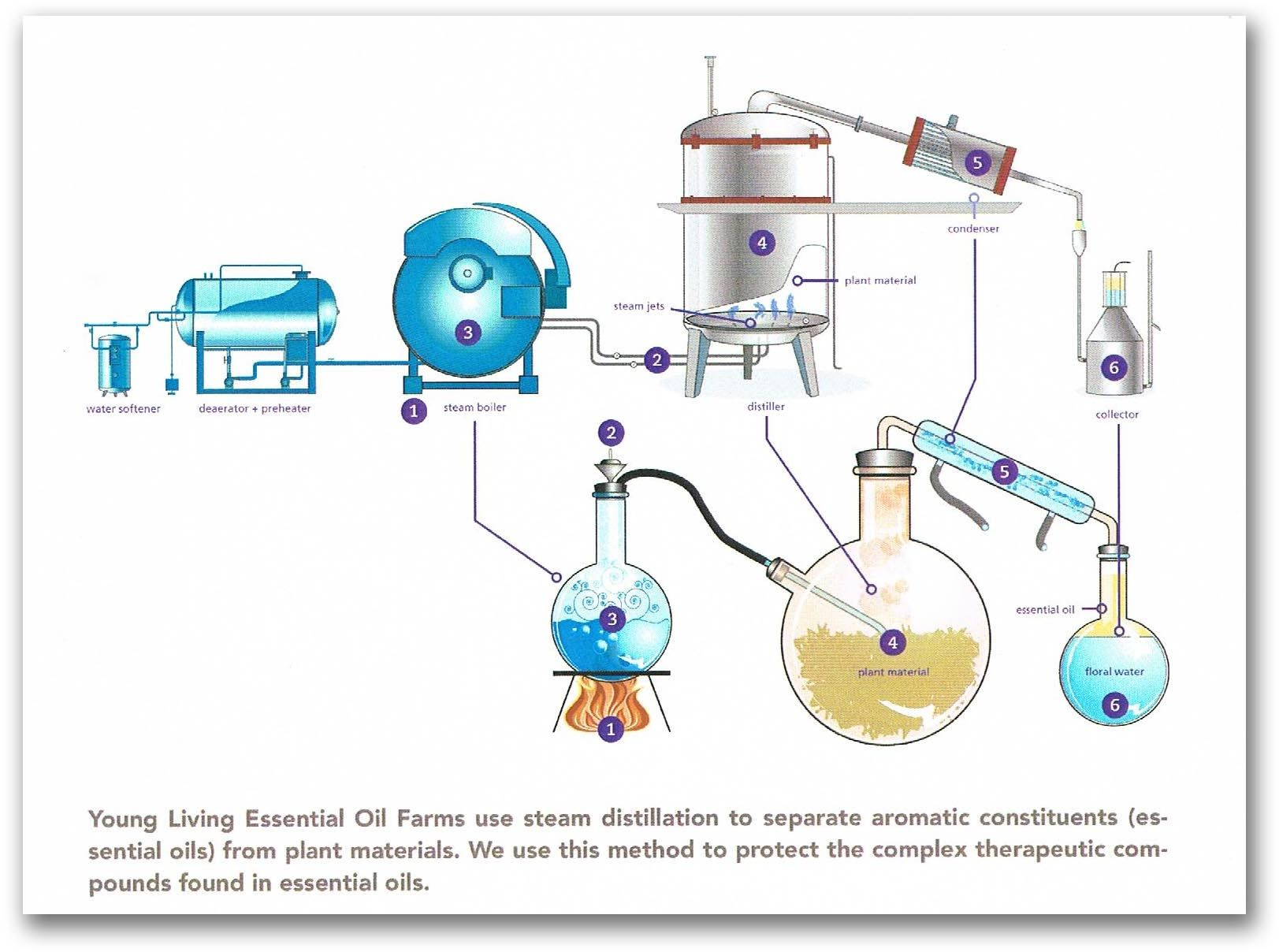 Pin On Distillation  Wine Making   Ect