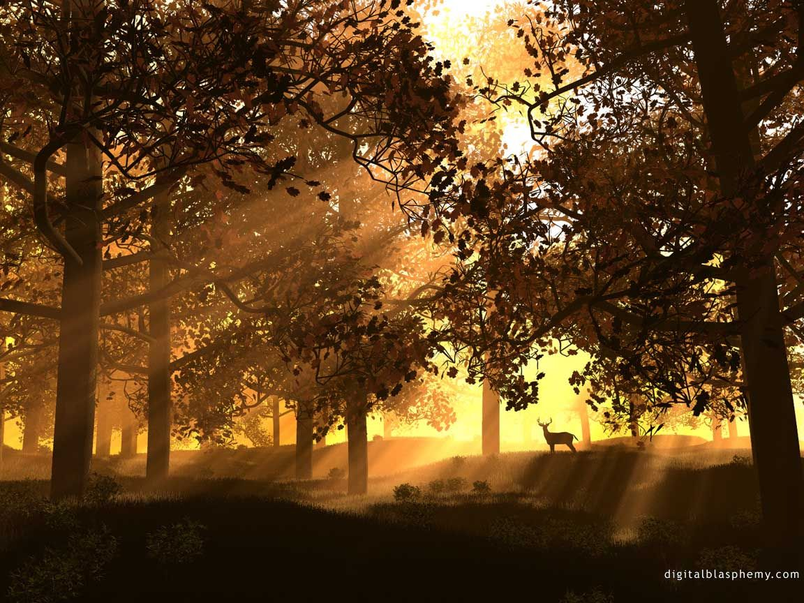 """Résultat de recherche d'images pour """"paysage respirer"""""""