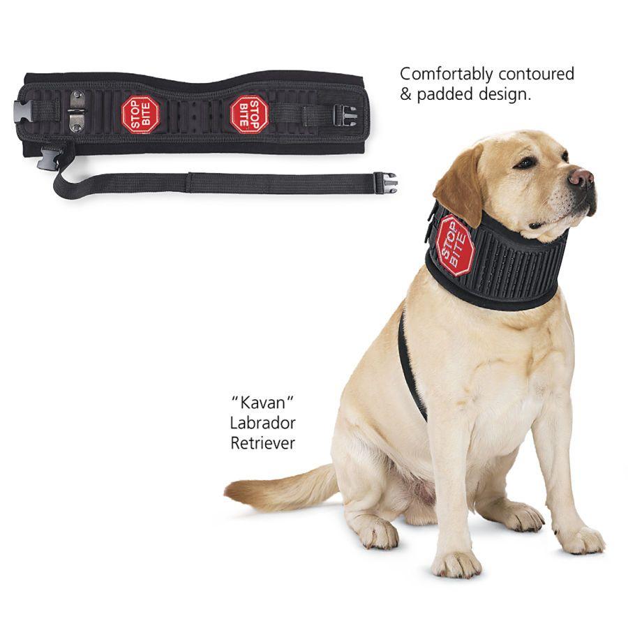 Stop Bite Collar Alternative To Cone Of Shame Dog Biting