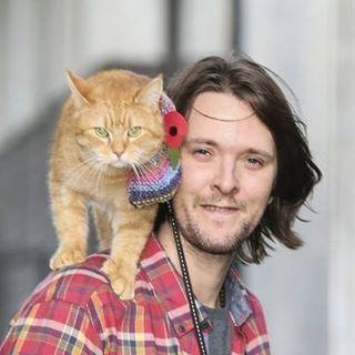 7 276 Abonnenten 11 Folgen 140 Beitrage Sieh Dir Instagram Fotos Und Videos Von James Bowen Amp Bob Der Streuner B Street Cat Bob Cats A Cat Named Bob