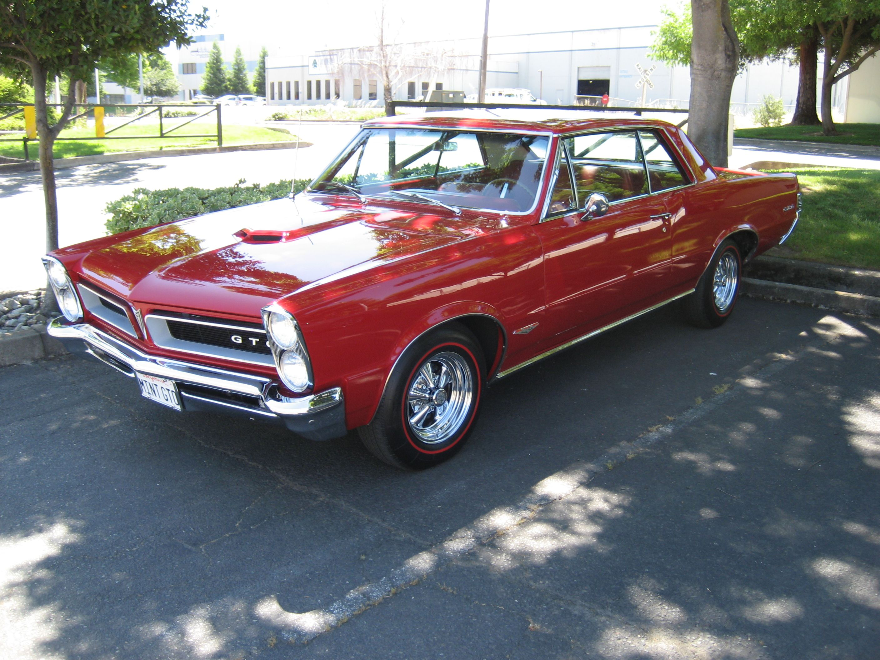 Northern California Gto Club Gto 1965 Gto Pontiac Gto