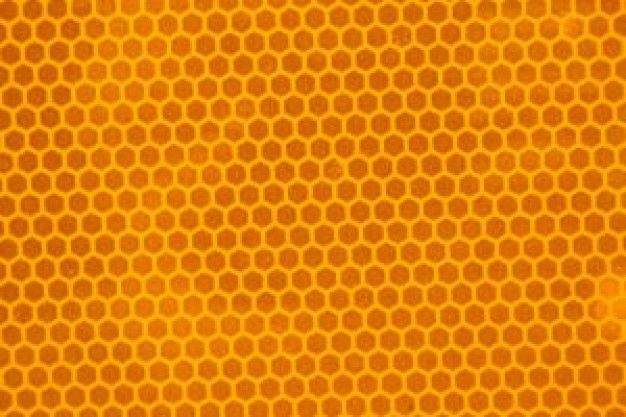 Honeycomb Texture In Amber