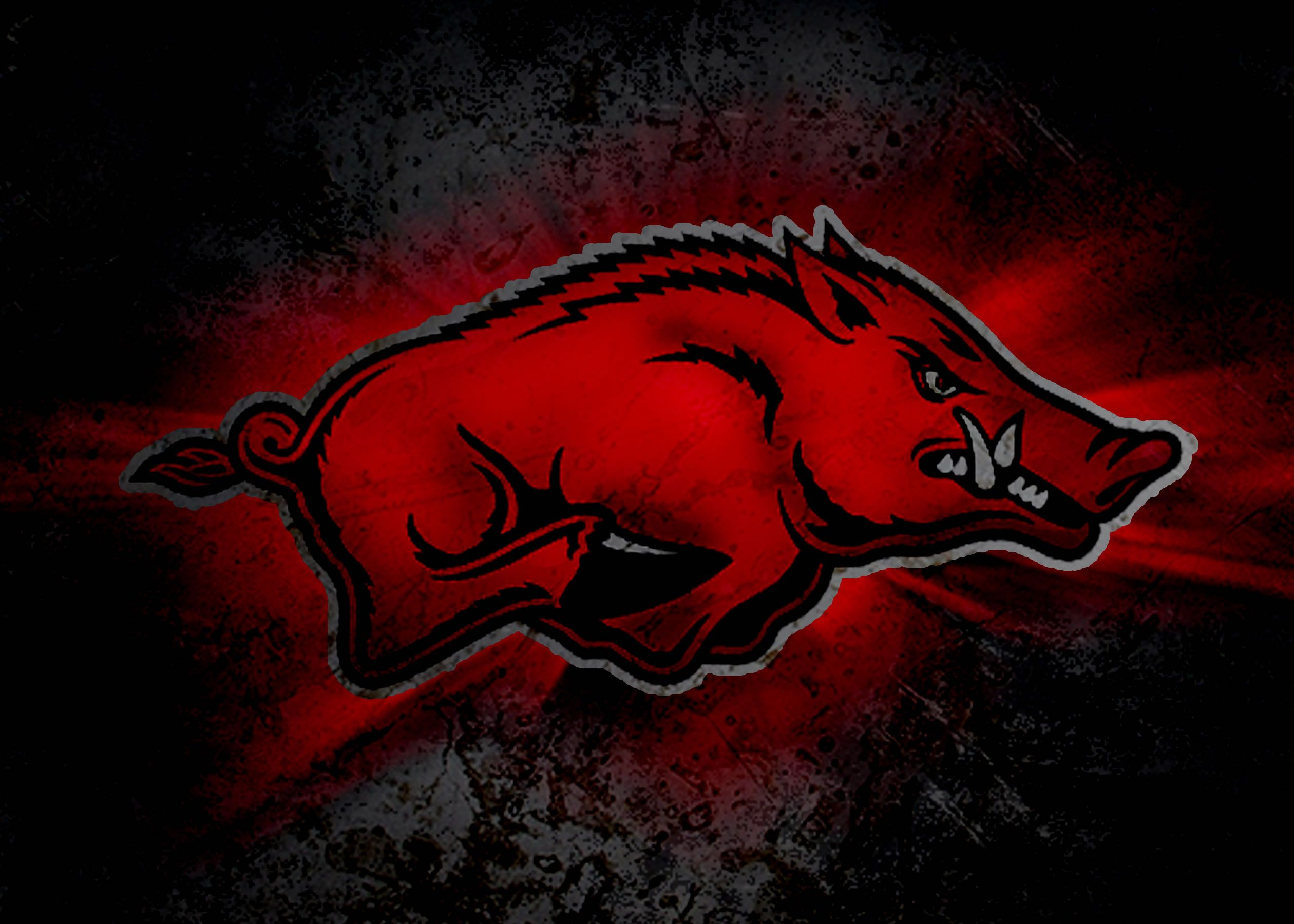 1280x1024 Razer Green Logo Hd Wallpaper 1920x1200edited Razer Logo Razorback Painting Arkansas Razorbacks Razorbacks