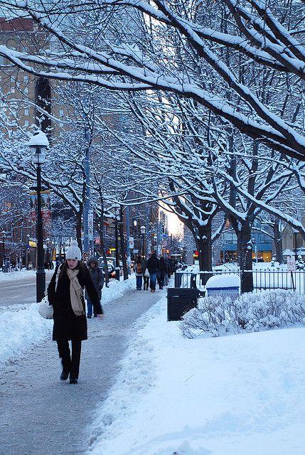 Toronto Winter Street Scene Lugares Q Amo Toronto