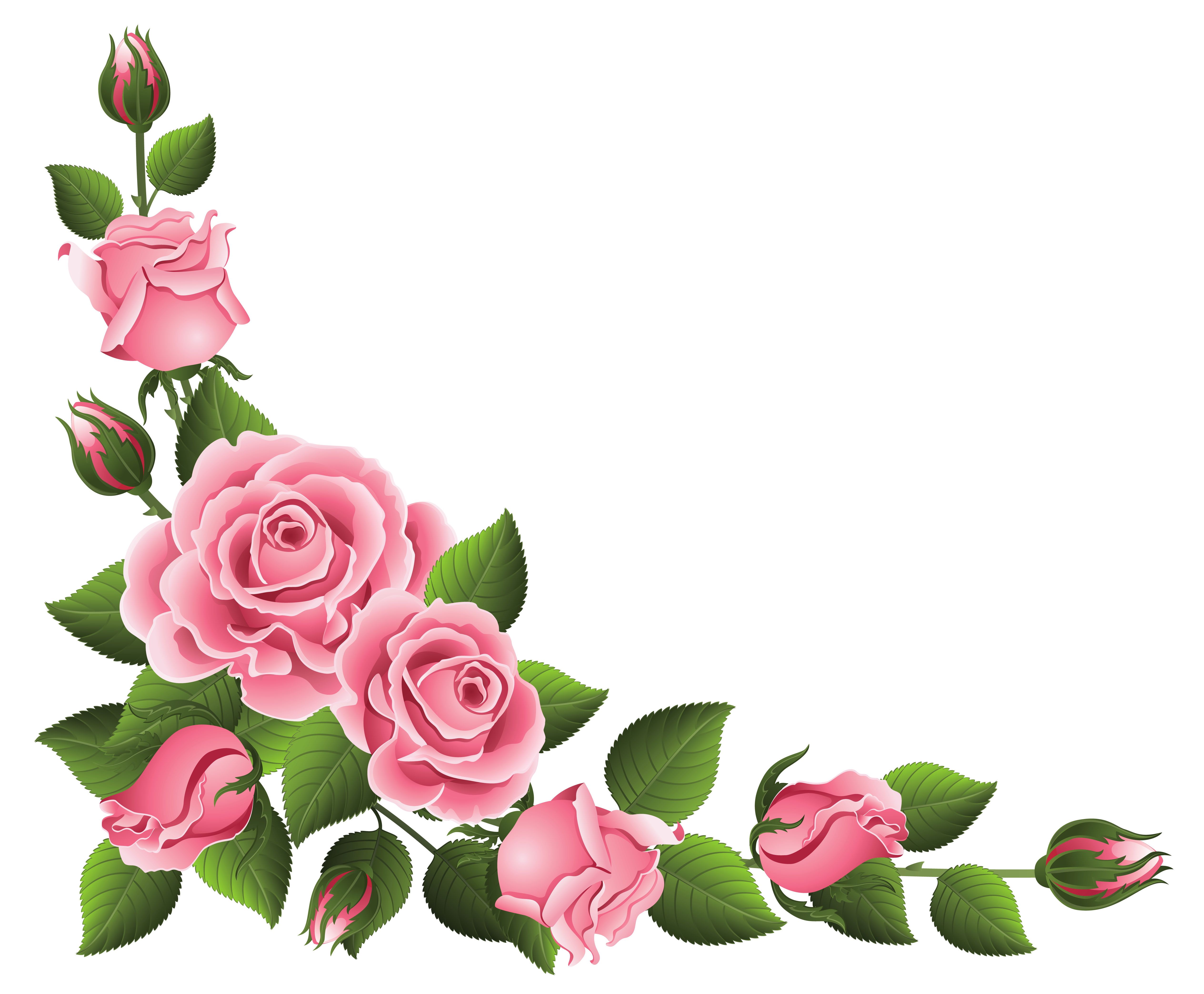 Corner Decoration With Roses Png Clipart Picture Clip Art Borders Flower Border Rose Clipart