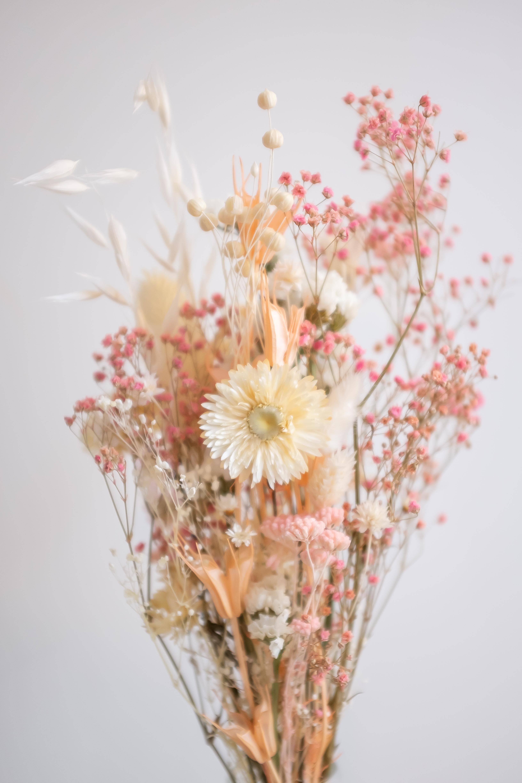 Comment Faire Secher Une Rose Fraiche bouquet de fleurs séchées dans les couleurs du printemps