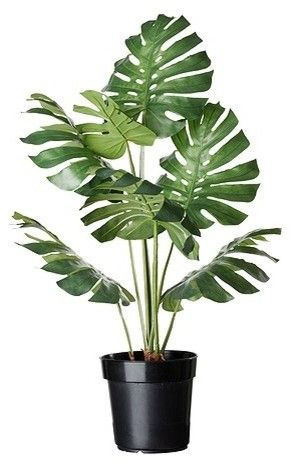 Potted Plants Artificial Potted Plants Ikea Plants Plants