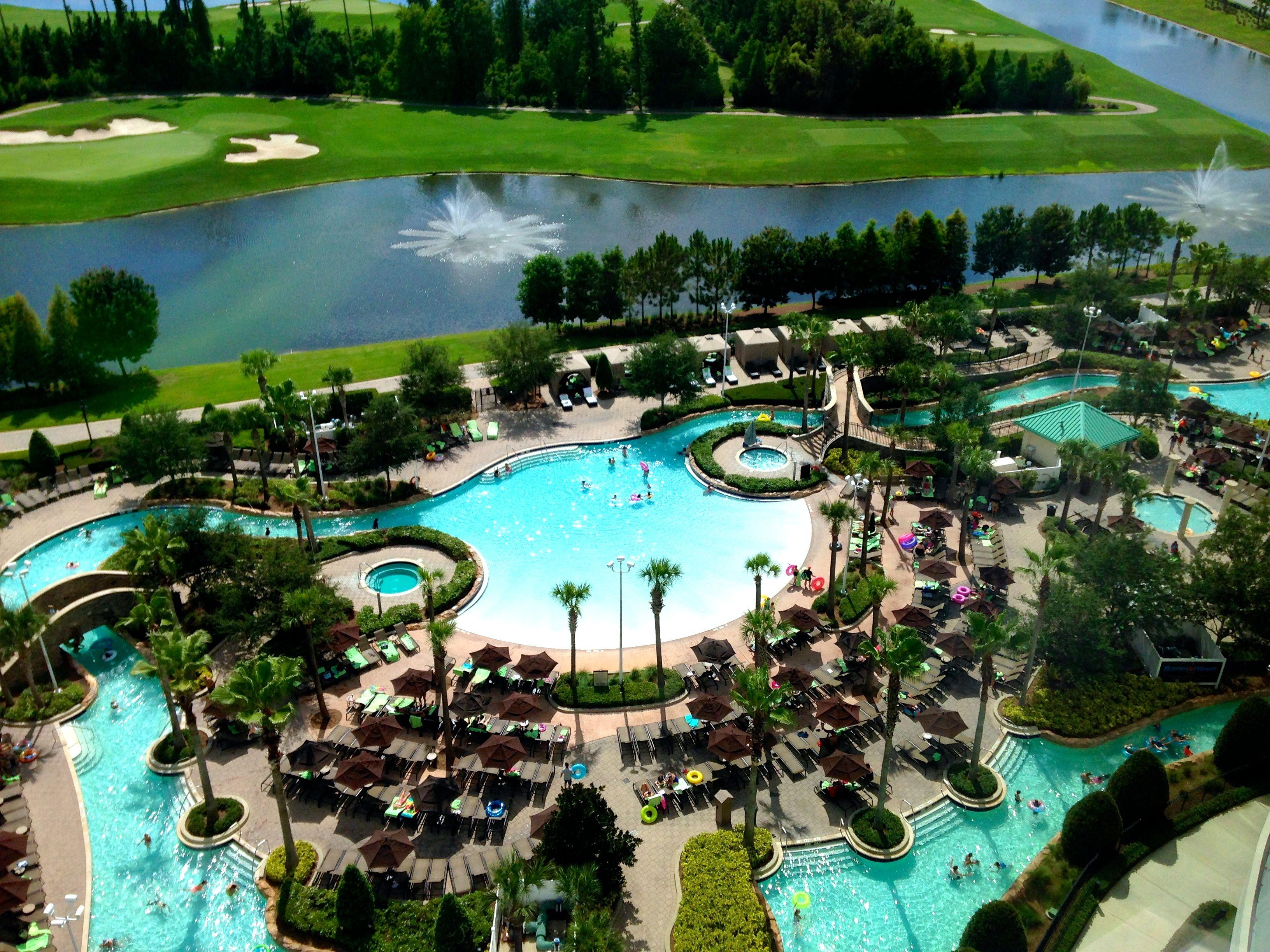 "Google SERP Results ""Hilton Orlando Bonnet Creek"""