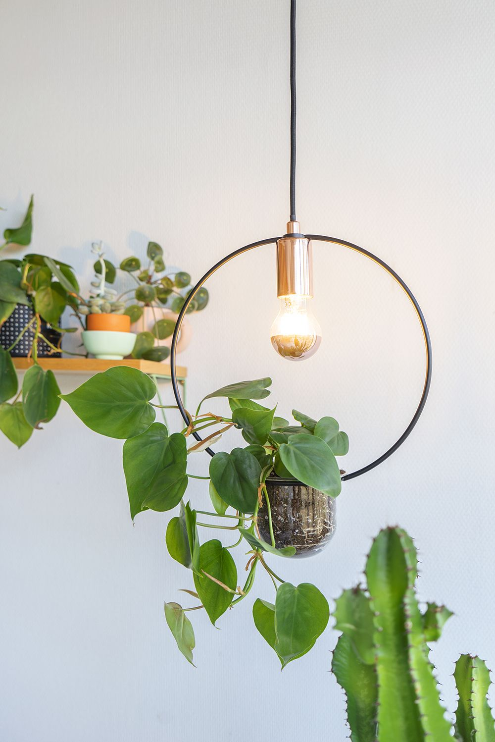 Paulmann Plant Lamps Grow Lights For