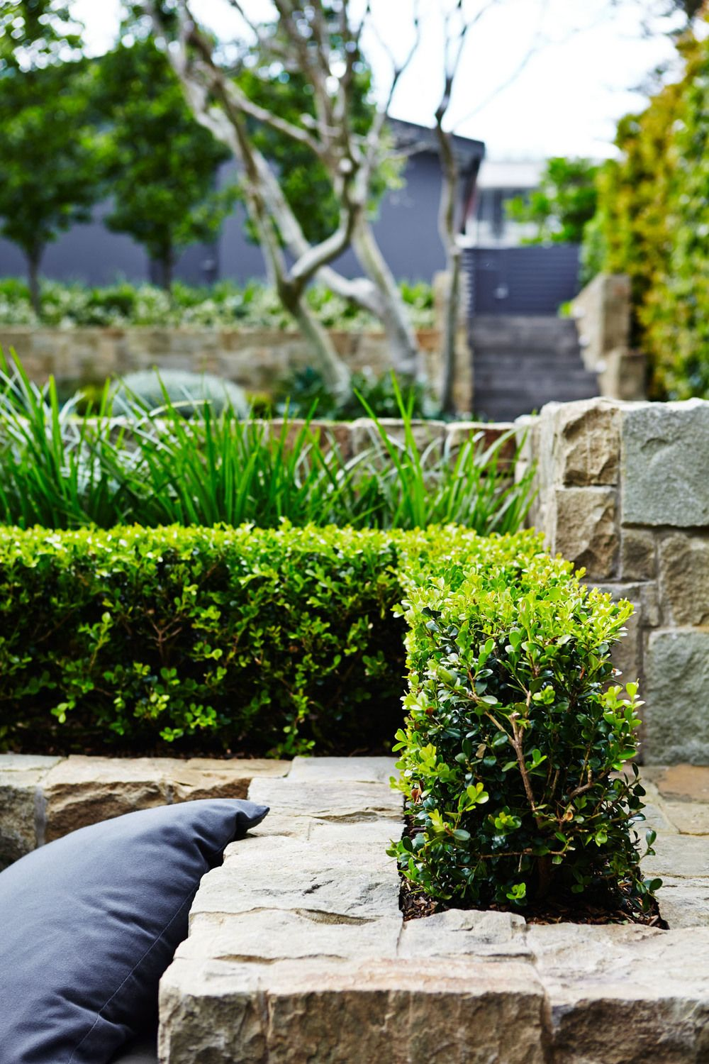 Mosman Landscape Design Outdoor Establishments vrt Pinterest