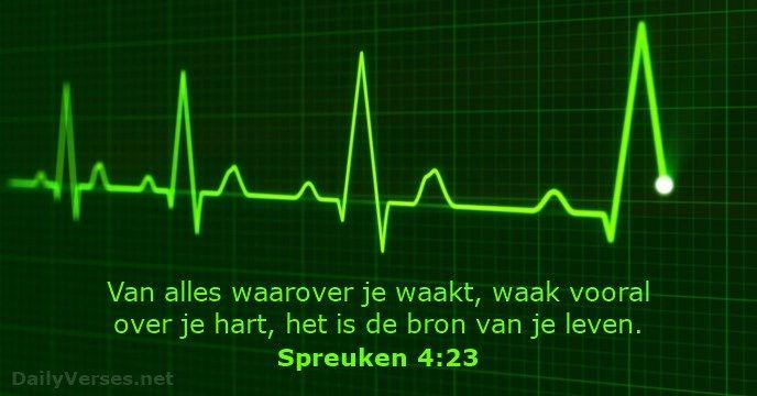 spreuken 4 23 spreuken 4:23 | Bijbelteksten en quotes | Pinterest spreuken 4 23