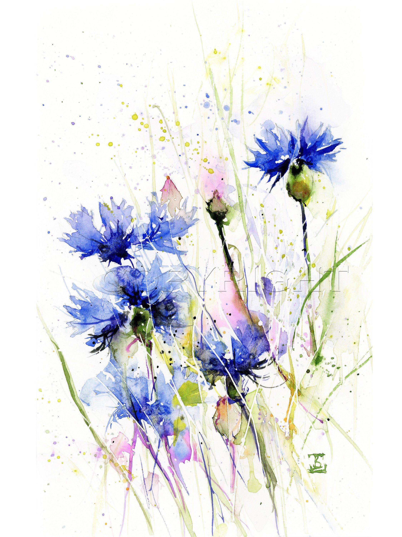 Cornflowers Original Watercolor Blue Flowers Painting Floral Etsy Blue Flower Painting Flower Painting Floral Painting
