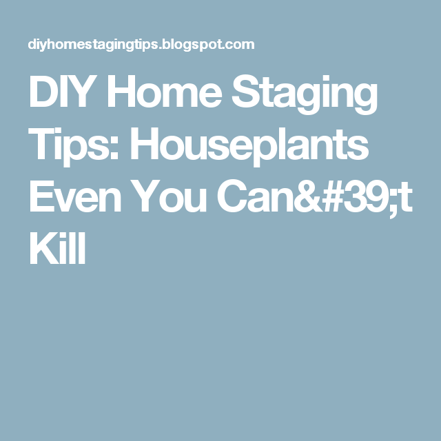 DIY Home Staging Tips: Houseplants Even You Can't Kill