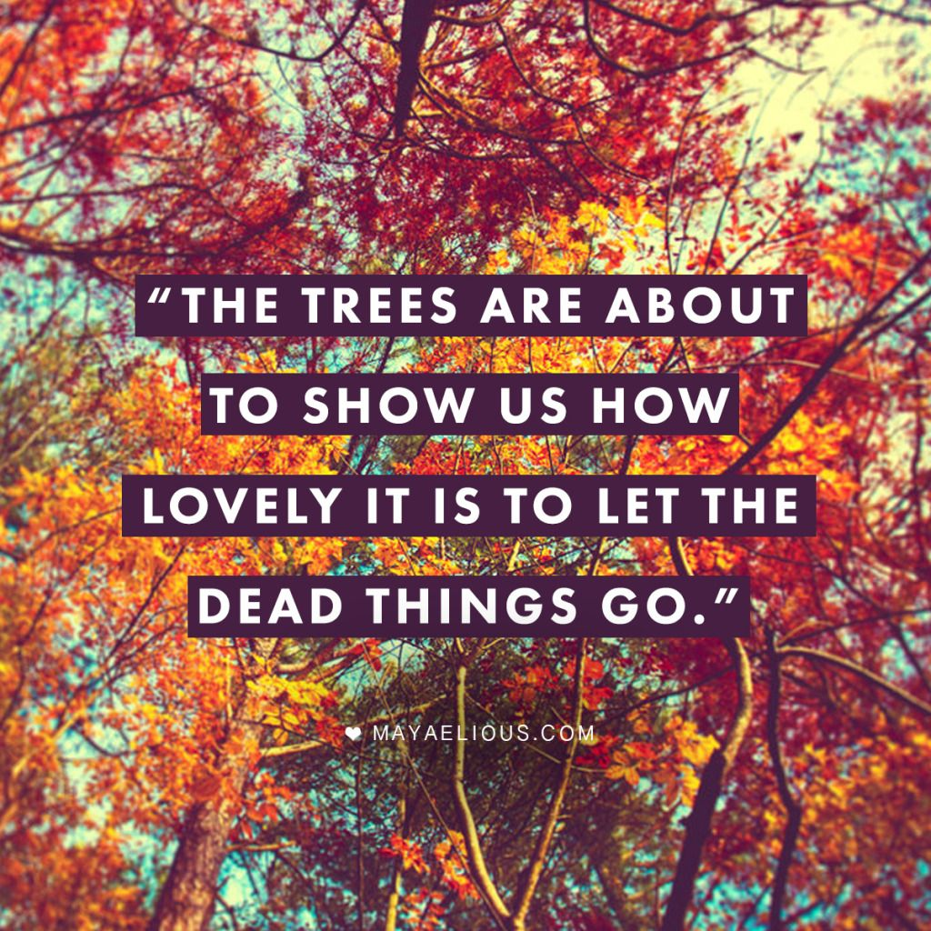 Quotes About Leaves And Trees
