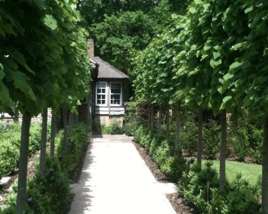 Garden Design Project in Sevenoaks, Kent   Garden design ...
