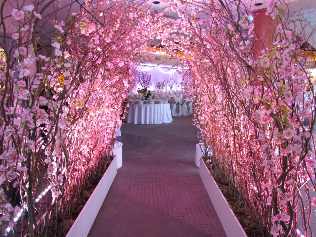 Cherry Blossom #Wedding Decor from Greenscape Design & Decor  http://www.greenscapedecor.com/b… | Blossom tree wedding, Cherry blossom  wedding decor, Sakura wedding