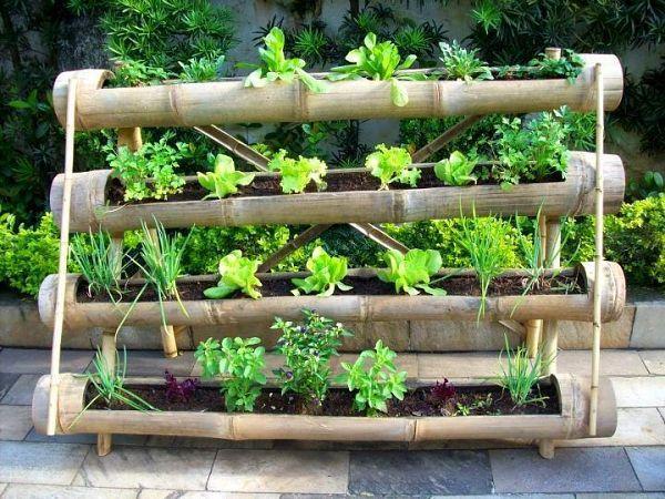 Muito en cañas de bambu | Cool | Pinterest | Horta, Horta caseira e  HY32