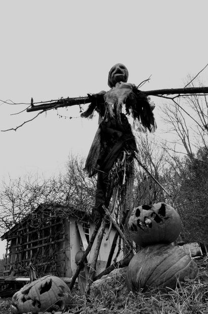 love the b/w photo..rotting pumpkins, scarecrow, creepy building in background, the whole composition