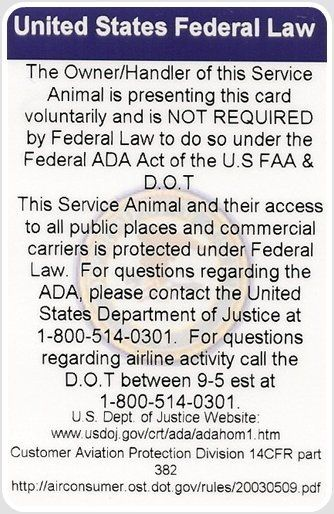 image about Printable Ada Service Dog Card called ADA Federal Provider Canine Legislation Card Pets Company canine