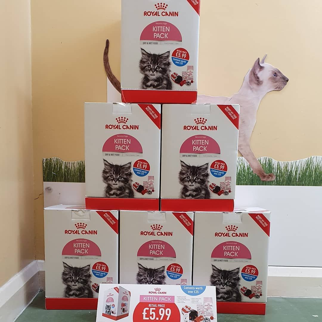 We Now Stock Royal Canin Kitten Starter Pack For A Great Price Whilst Stocks Last Pinions Pinionspetfood Superfood Healthyfood Kitten Cat Food Cat S