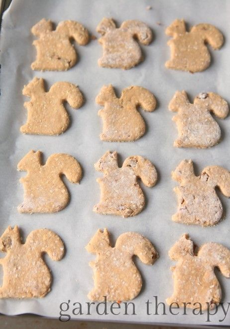 The Homemade Dog Cookies That Make Dogs Go Squirrley Homemade