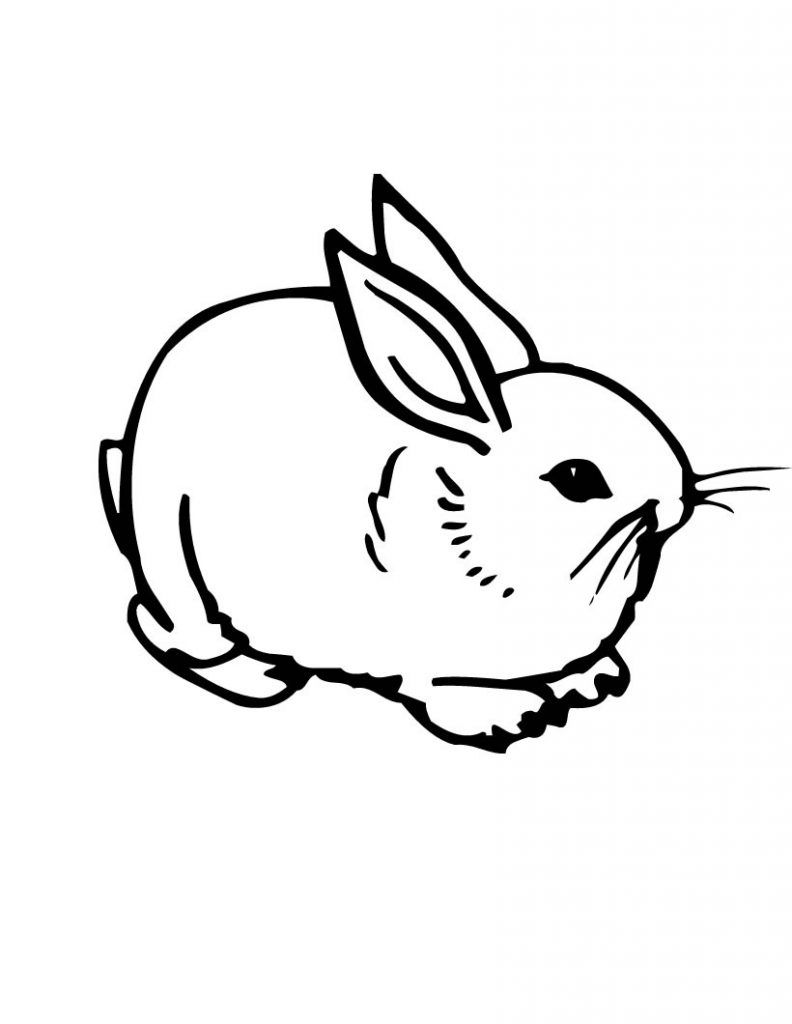 Free Printable Rabbit Coloring Pages For Kids Bunny Coloring Pages Cute Coloring Pages Animal Coloring Pages