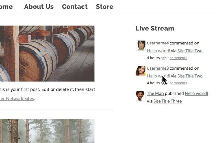live stream widget WordPress
