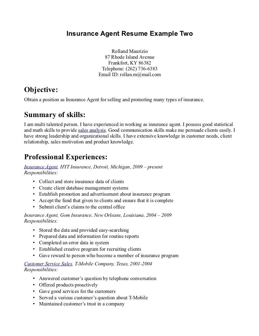 Airline Ticketing Agent Sample Resume Data Warehouse Architect