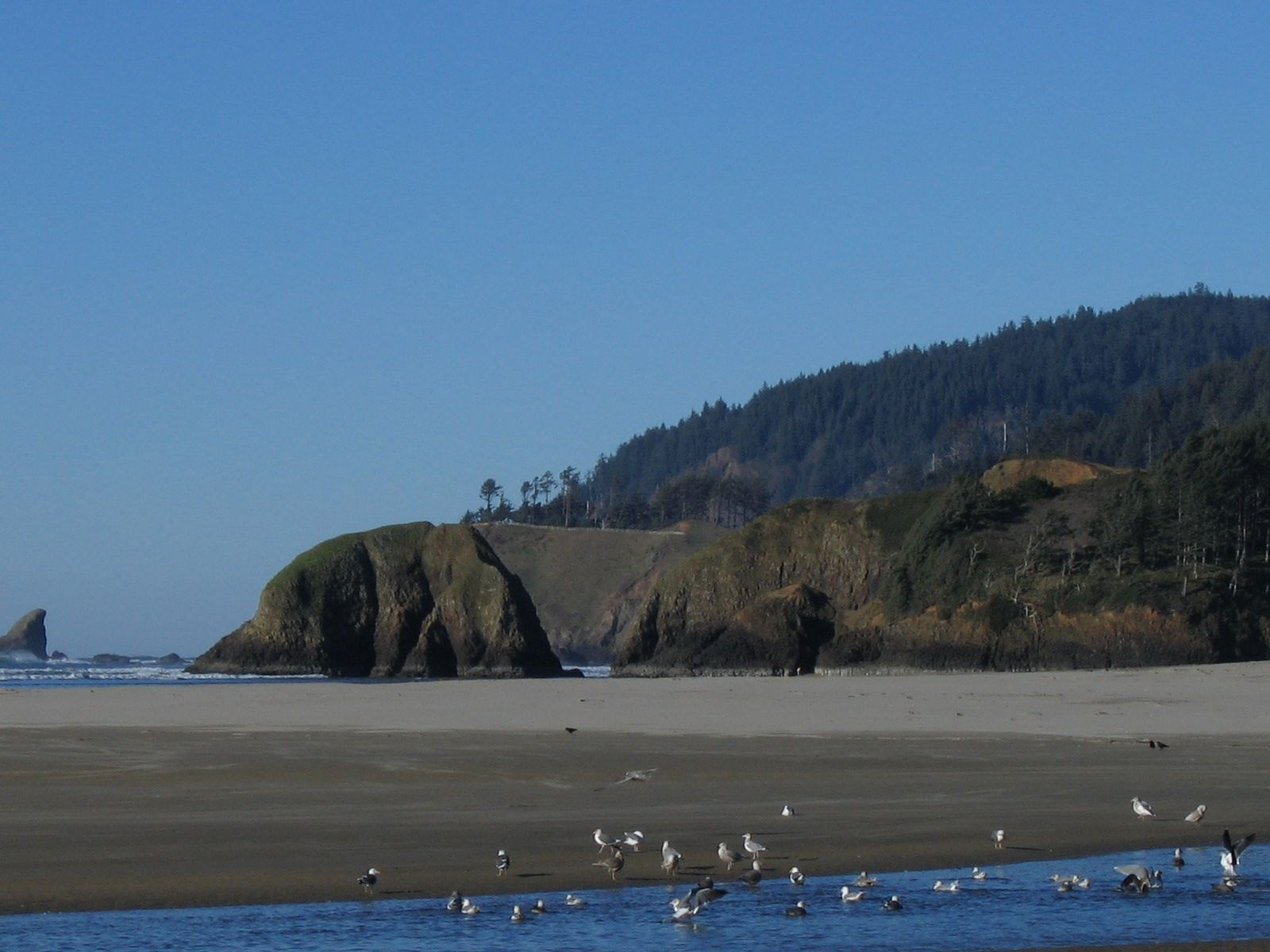 Cannon Beach, Oregon - Wikipedia, the free encyclopedia