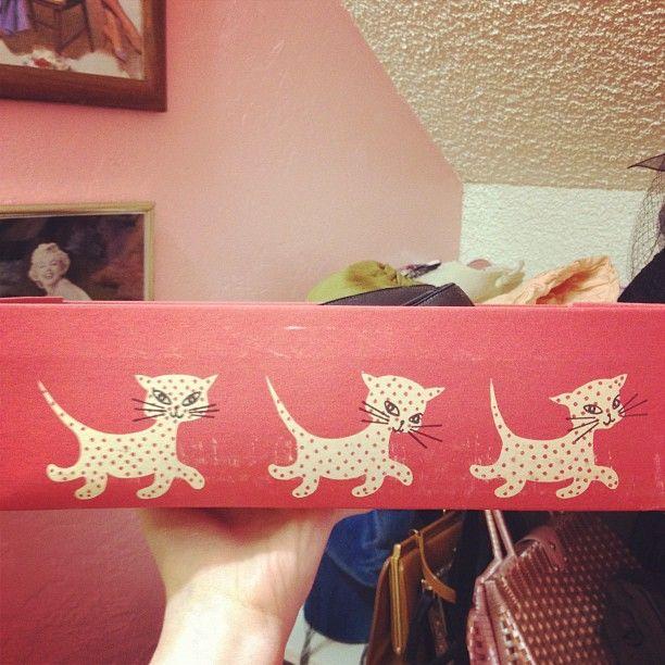 "atomic_redhead      ""Kitties on a shoebox!!"""