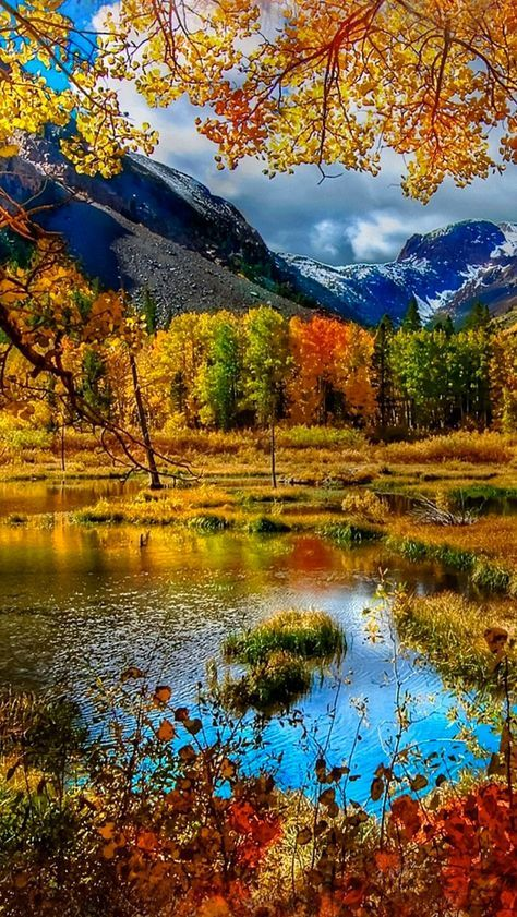 Mountain Autumn Iphone 5s Wallpaper Autumn Scenery Scenery Nature Pictures