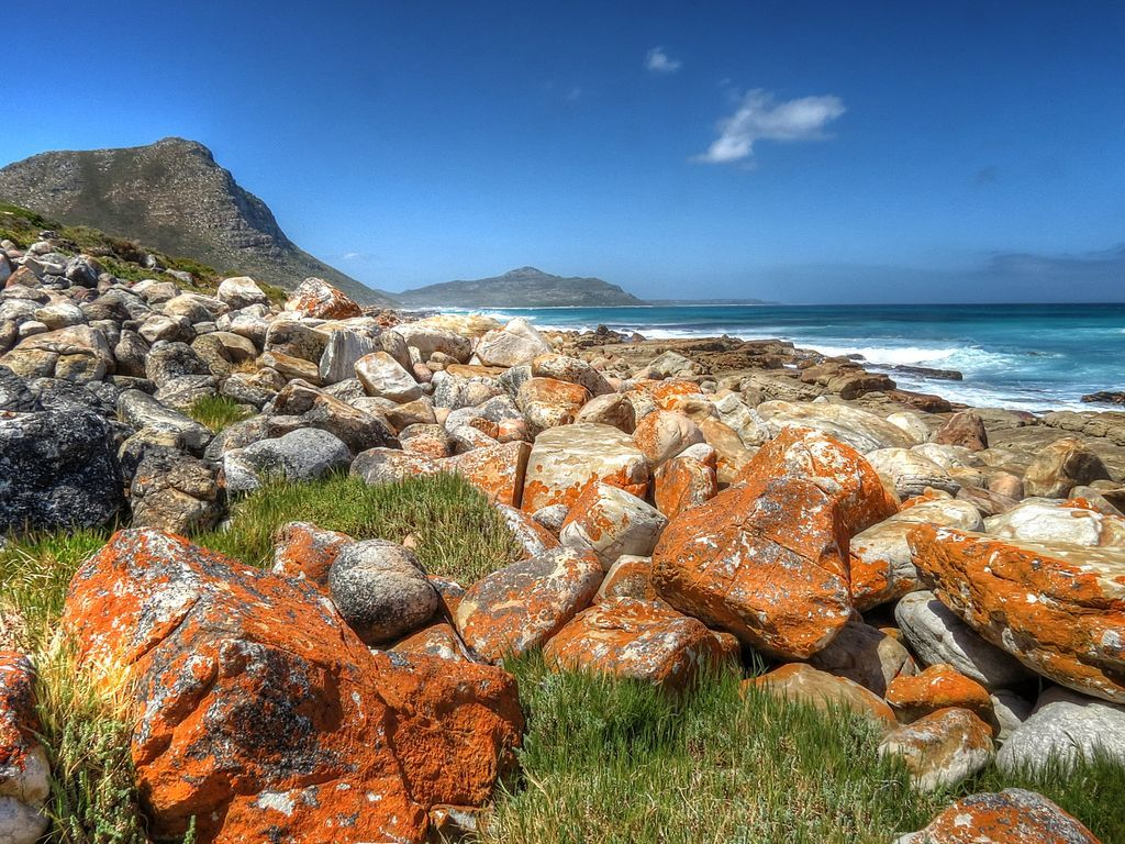 Cape Peninsula jigsaw puzzle in Great Sightings puzzles on ...