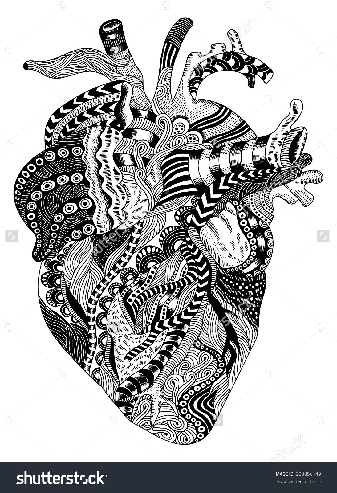stock-vector-detailed-hand-drawn-psychedelic-illustration-of-human, Muscles
