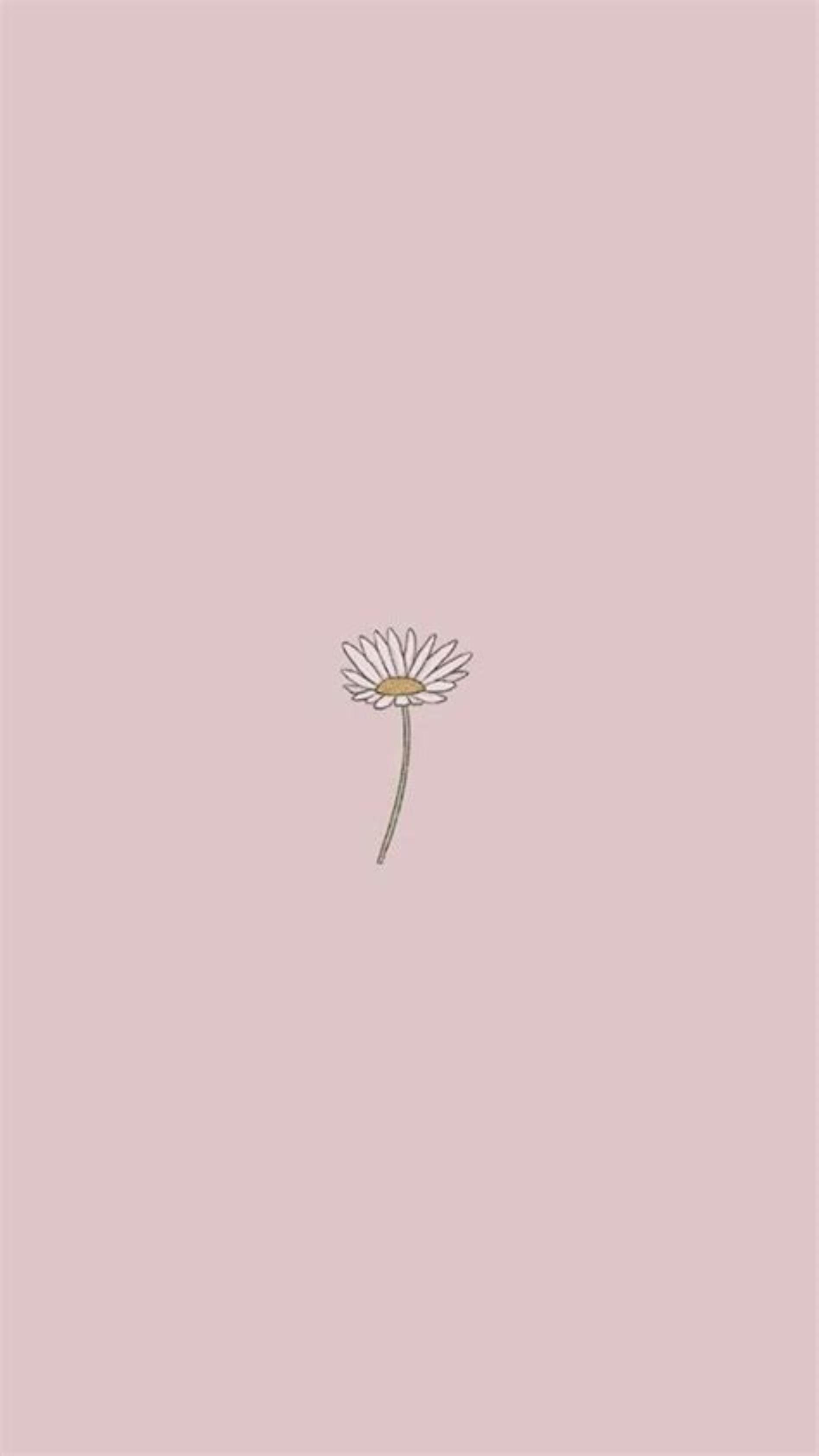 70 Best Simple Aesthetic Wallpaper Hd 2021wallpaper Iphone Aesthetic Pictures Wallpaper In 2021 Floral Wallpaper Phone Tumblr Iphone Wallpaper Pretty Wallpaper Iphone