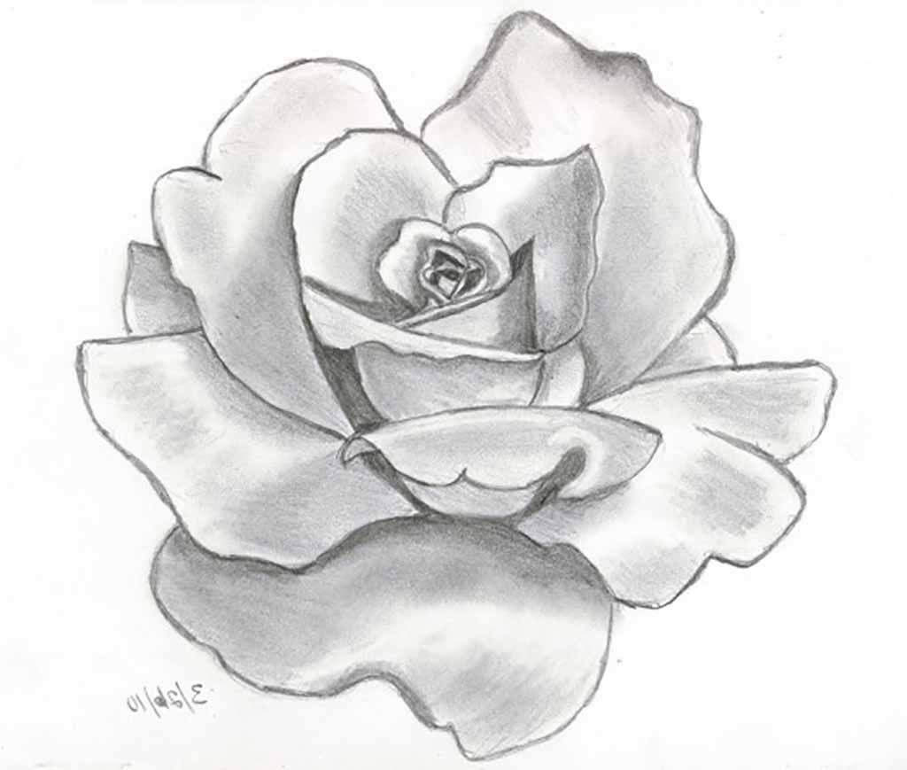 Flower drawings 42 amazing designs images with color card drawings of film by colouring pages ccuart Image collections