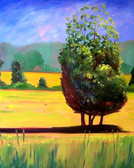 Afternoon Sun by Nancy Merkle