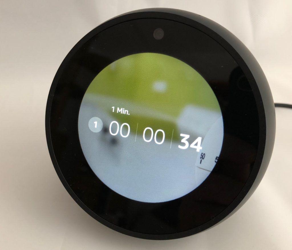 echo spot test