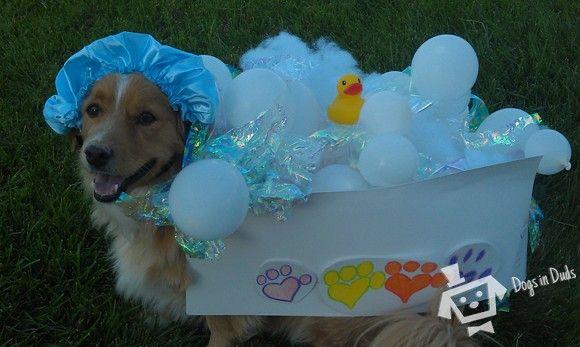 Dog Costumes Bubble Bath Nothing Like A Hot Bath Dog Halloween