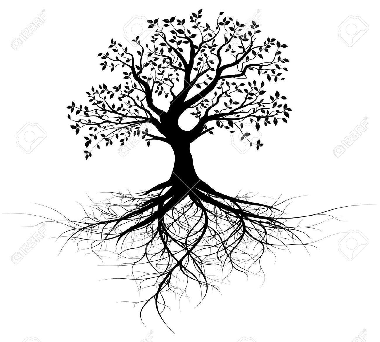 L 39 ensemble arbre noir avec des racines isol es vecteur fond blanc tatoo arbre tatouage - Arbres dessins ...