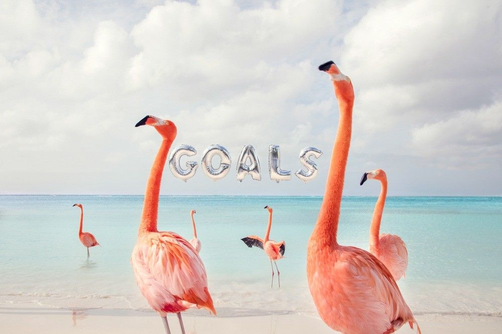 """Goals"" print, Gray Malin"