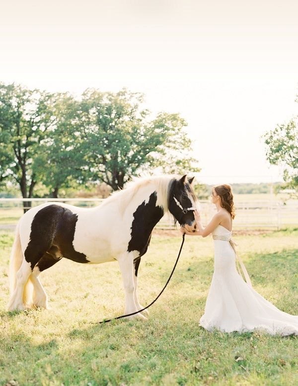 8c68efcf5134 Oklahoma bridals with a horse   Wedding-Day-Bliss