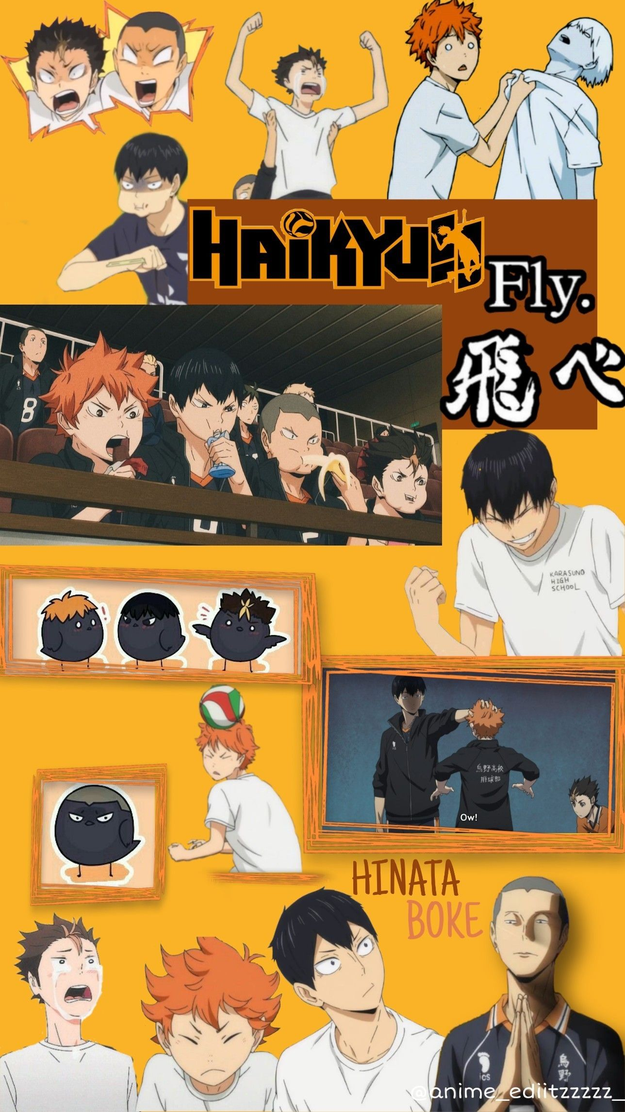 Karasuno Aesthetic Haikyuu Aesthetic In 2020 Haikyuu Wallpaper Anime Wallpaper Iphone Anime Backgrounds Wallpapers