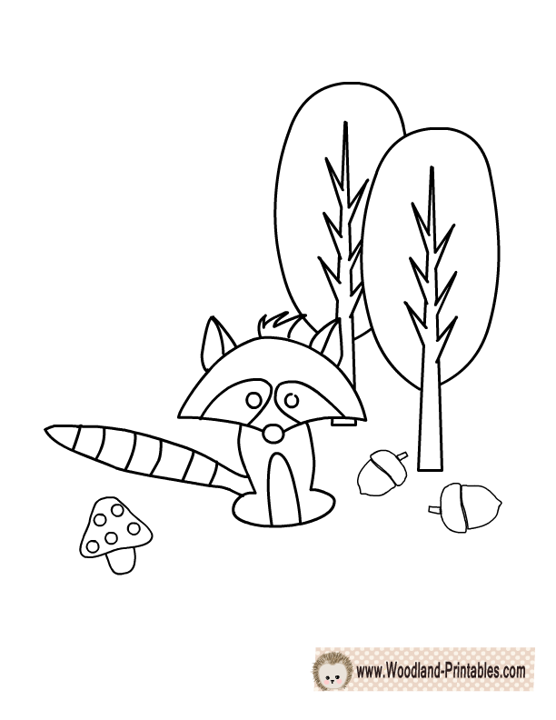Free Printable Raccoon Coloring Page Animal PagesWoodland