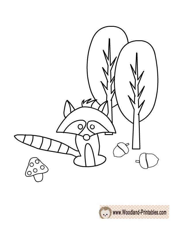 Free Printable Raccoon Coloring Page Animal PagesWoodland