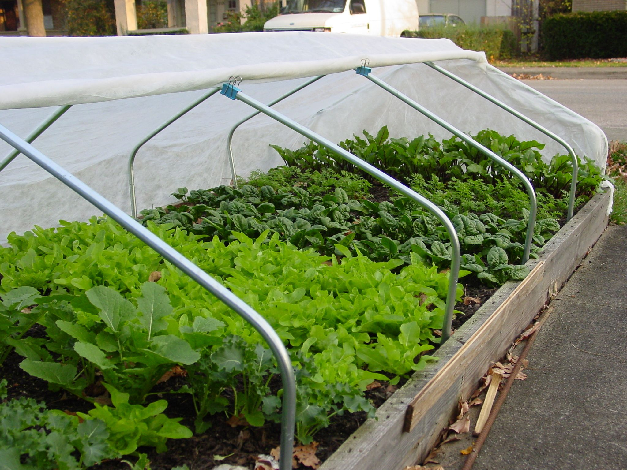 Raised Bed With Hoop House Hoop House With Images Sacred