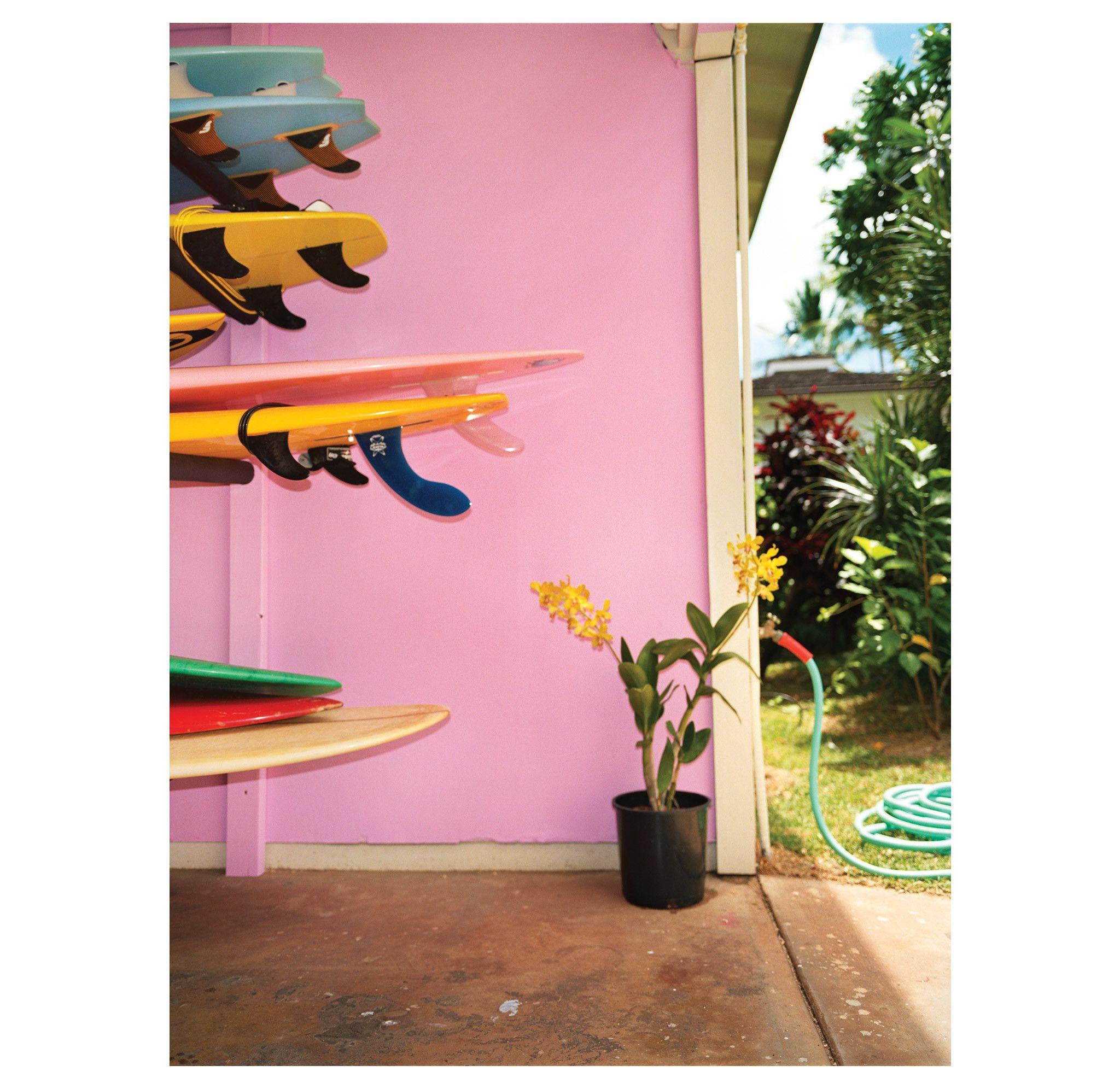 Dewey Nicks – Pink Wall