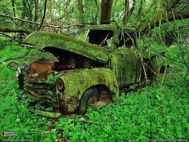 Old truck...sure would make a nice rat rod