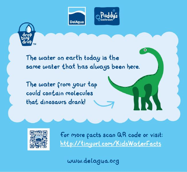 A dinosaur drank your glass of water! #KidsFacts #Water #CleanWater #Dinosaurs #DailyFacts | Water facts, Water, Molecules