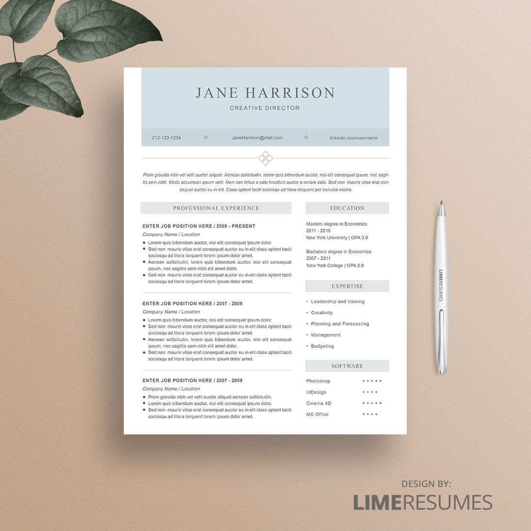 resume template 31