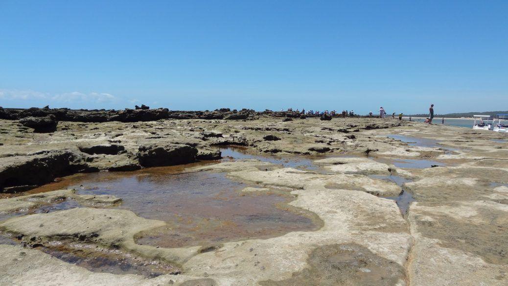Arrecifes Entre Barra De Sao Miguel E Gunga Maceio Alagoas